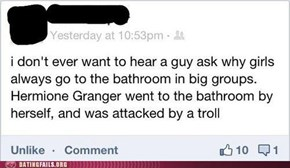 The Bathroom is a Perilous Place