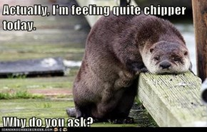 Actually, I'm feeling quite chipper today.  Why do you ask?