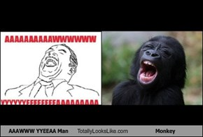 AAAWWW YYEEAA Man Totally Looks Like Monkey