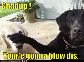 Shadup !   Your'e gonna blow dis.