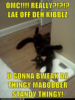 OMC!!!! REALLY?!?!? LAE OFF DEH KIBBLZ  U GONNA BWEAK DA THINGY MABOBBER STANDY THINGY!