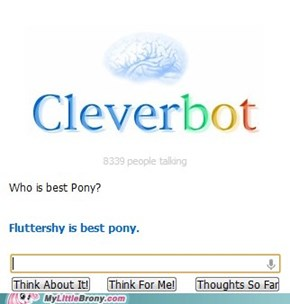 Even Cleverbot knows...