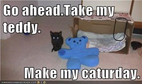 Go ahead.Take my teddy.  Make my caturday.
