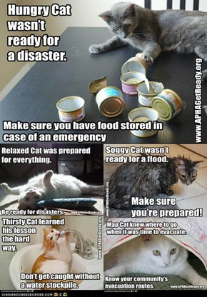 Get Ready Cats are Ready for National Preparedness Month