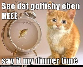 See dat golfishy eben HEEE  say it my dinner time