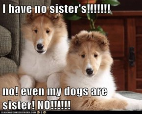 I have no sister's!!!!!!!  no! even my dogs are sister! NO!!!!!!
