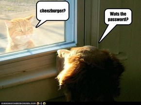 wats the password?