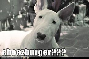 cheezburger???