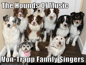 The Hounds Of Music  Von-Trapp Family Singers