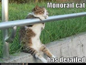 Monorail cat  has derailed