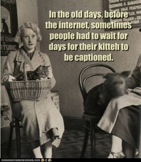 In the old days, before the internet, sometimes people had to wait for days for their kitteh to be captioned.