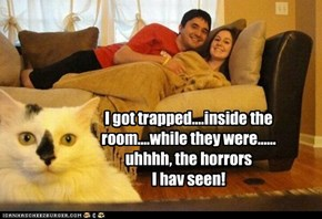 I got trapped....inside the room....while they were...... uhhhh, the horrors I hav seen!