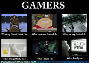 What Gamers Do
