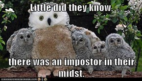 Little did they know,   there was an impostor in their midst.