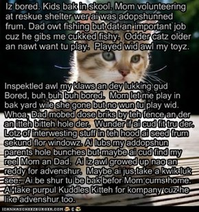 Bwave Asplorer Kitteh RR:  Kitteh Asplors teh Nayborhood, Episode 1