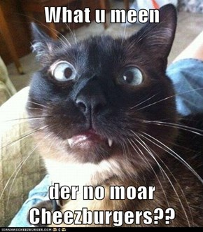What u meen  der no moar Cheezburgers??