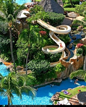 WHEEE!: Westin Maui Resort & Spa Vacations