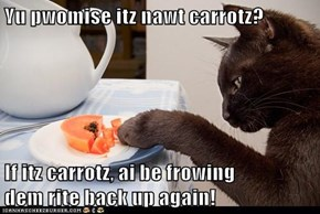 Yu pwomise itz nawt carrotz?  If itz carrotz, ai be frowing                                                   dem rite back up again!