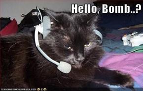Hello, Bomb..?