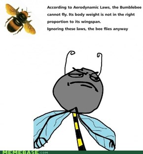 F Yeah Bees