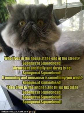 Spongecat Squarehead!