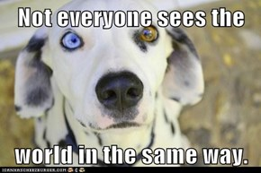 Not everyone sees the  world in the same way.