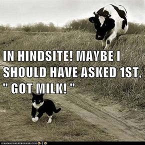"IN HINDSITE! MAYBE I SHOULD HAVE ASKED 1ST, "" GOT MILK! """