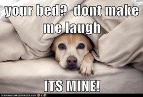 your bed?  dont make me laugh  ITS MINE!