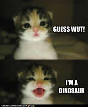 Ima Dino