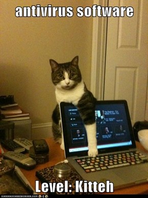antivirus software  Level: Kitteh