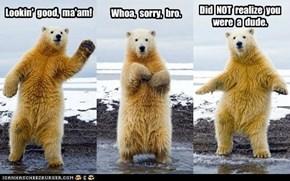 """""""No Homo"""" Bear"""