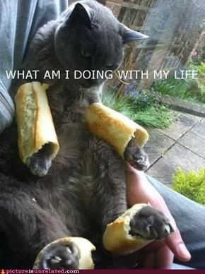 Breadcat?