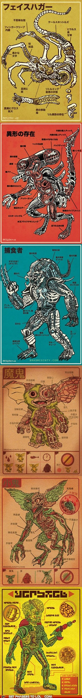 Monster Anatomy