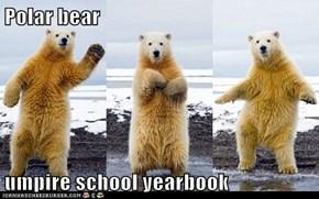 Polar bear  umpire school yearbook