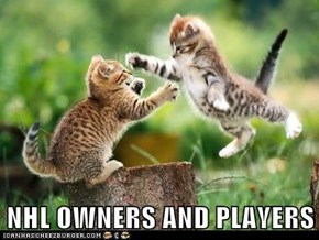 NHL OWNERS AND PLAYERS