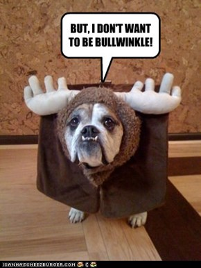 BUT, I DON'T WANT TO BE BULLWINKLE!