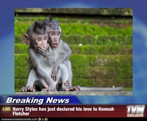 Breaking News - Harry Styles has just declared his love to Hannah Fletcher