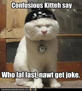 Wise Furrlotsafurr Cat