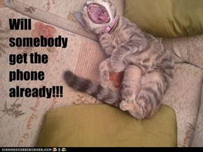 Will somebody  get the phone already!!!