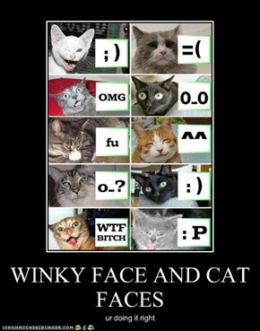 WINKY FACE AND CAT FACES