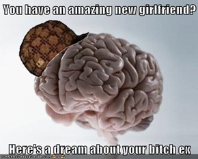 You have an amazing new girlfriend?  Here's a dream about your bitch ex