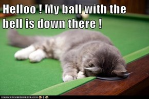 Helloo ! My ball with the bell is down there !