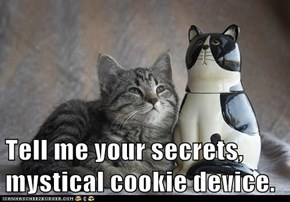 Tell me your secrets, mystical cookie device.