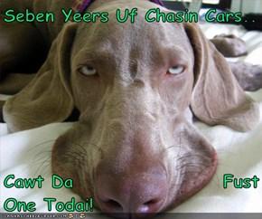 Seben Yeers Uf Chasin Cars..  Cawt Da                    Fust One Todai!