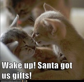 Wake up! Santa got us gifts!