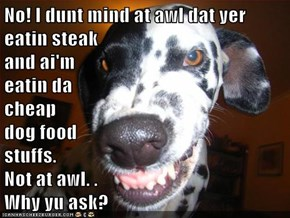 No! I dunt mind at awl dat yer eatin steak                                             and ai'm                                            eatin da                                            cheap                                                        dog