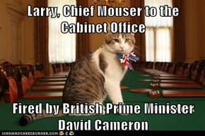 Larry, Chief Mouser to the Cabinet Office  Fired by British Prime Minister David Cameron