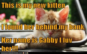 This is my new kitten  I found her behind my bank.  Her name is Gabby I luv her!!!
