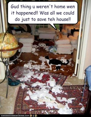 Gud thing u weren't home wen it happened!