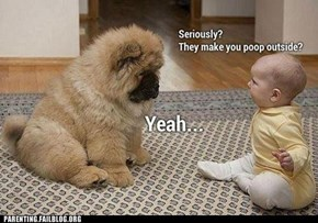 That's Ruff, Dog